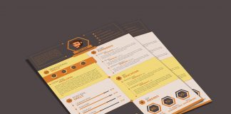 flat-resume-template-for-web-designer-web-developers