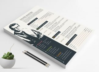simple-yet-professional-resume-cv-design-template-1