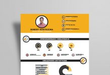 Free Infographic Resume Design Template Ai File (4)