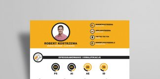 Free Infographic Resume Design Template Ai File (4)