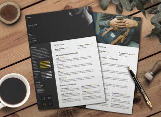 Free Curriculum Vitae-CV DesignTemplate PSD File (1)