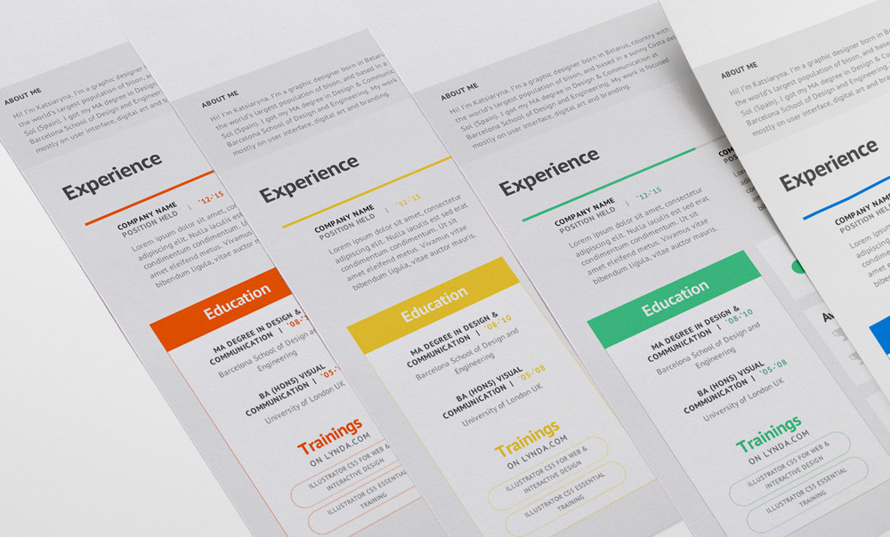 Software Professional Minimal Resume Template