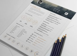 Free Stylish Resume Template And Resume Icons Ai File (3)