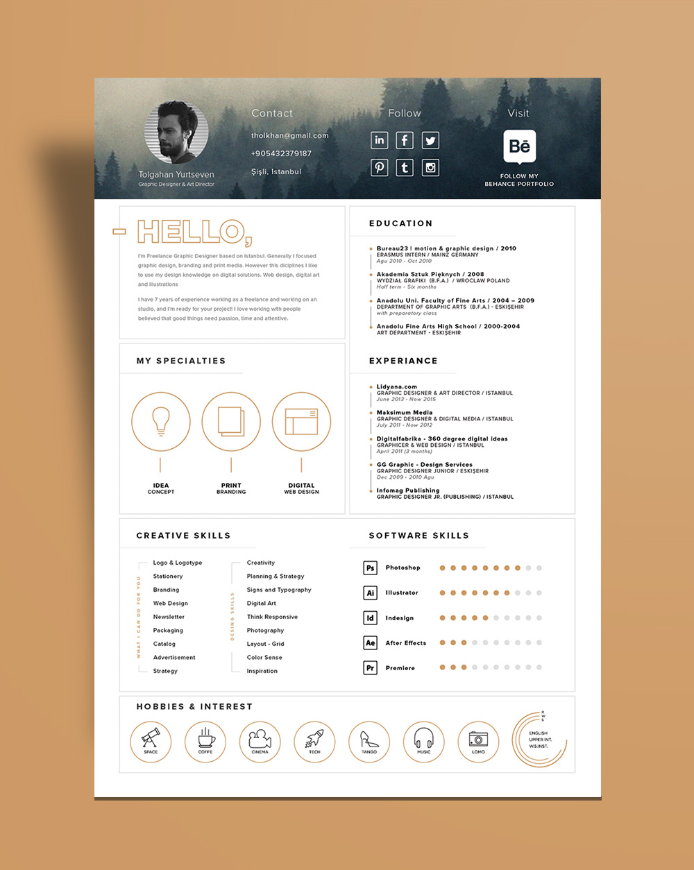 Free Stylish Resume Template And Icons Ai File