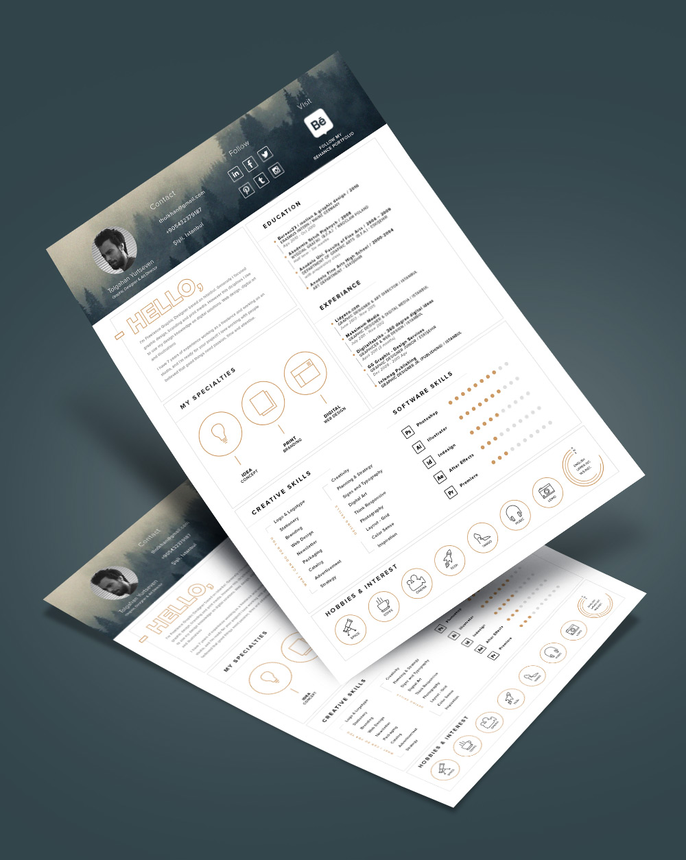 Free Stylish Resume Template And Resume Icons Ai File (8)
