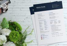 Simple Resume (CV) Template Design For Designers Ai File (1)
