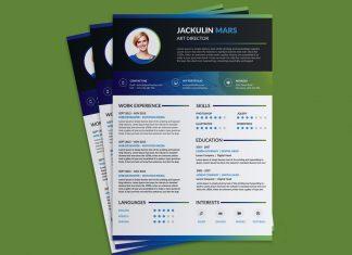 Beautiful Resume (CV) Design Template Free PSD File (1)