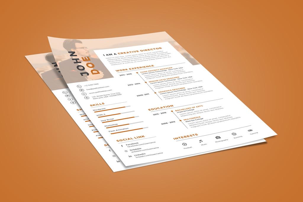 Creative Executive Resume (CV) Design Template PSD File (2)