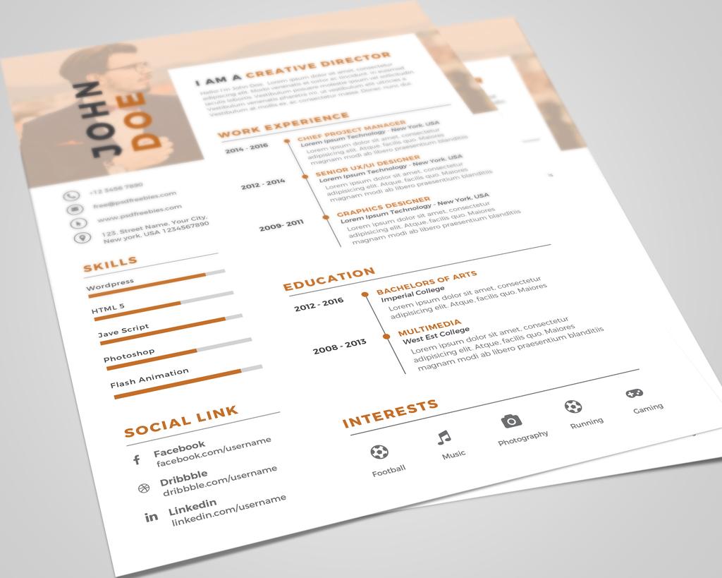 Creative Executive Resume (CV) Design Template PSD File (3)