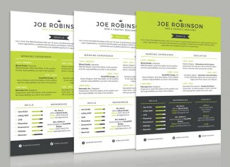 Elegant & Professional Resume (CV) Design Template in 3 Different Colors PSD File (1)