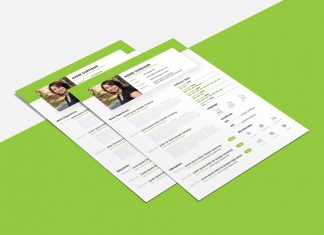 Free Beautiful Resume (CV) Design Template PSD & PPT File (1)