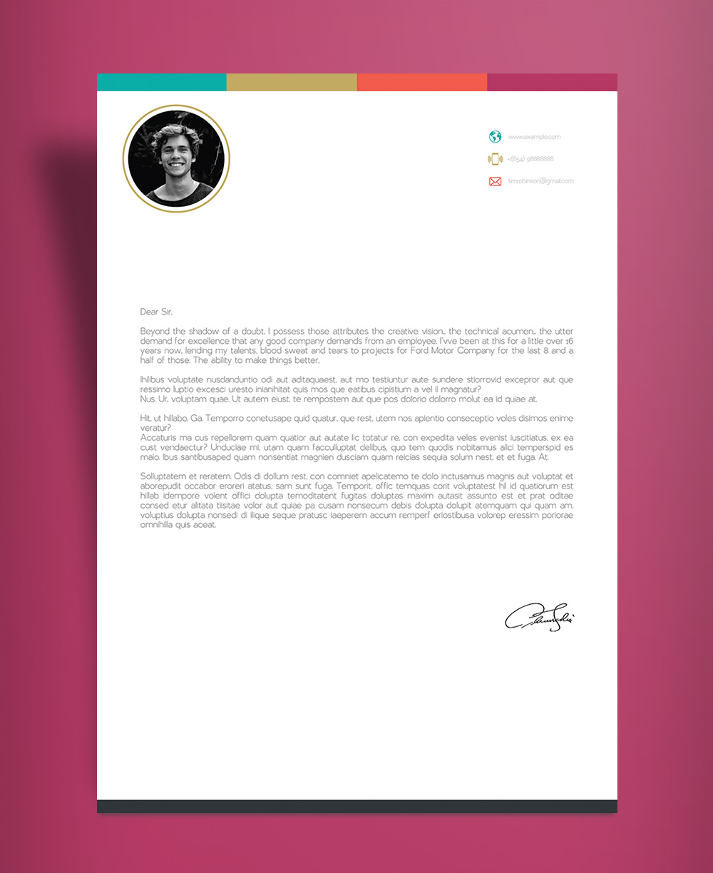Free Creative Infographic Resume Template With Cover Letter INDD File (5)