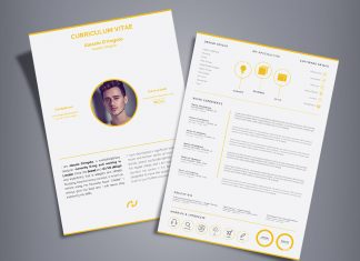 Free Professional 2 Page Resume Design (CV) Template Ai File (2)