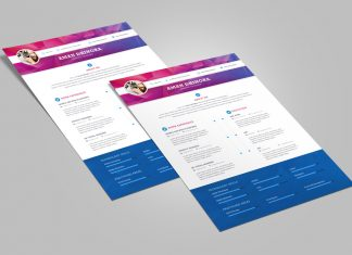 Free Professional Resume (CV) Design Template For Designers PSD File (3)