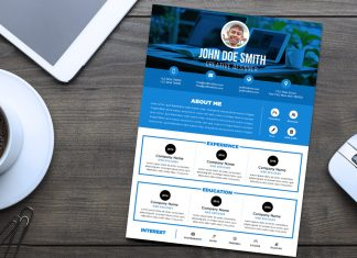 Free Professional Resume (CV) Design Template PSD File (1)