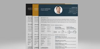 Free Professional Resume (CV) Template With Cover Letter & Portfolio PSD Files-1-1