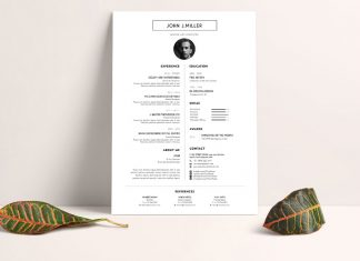 Free Simple & Minimal Layout Resume (CV) Design Template PSD File (3)