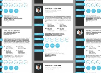Free Simple Resume (CV) Design Template PSD File (1)
