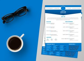 Free Simple Resume (CV) Design Template Ai File