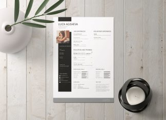Free-Beatiful-CV-Template-for-Business-Analyst-2