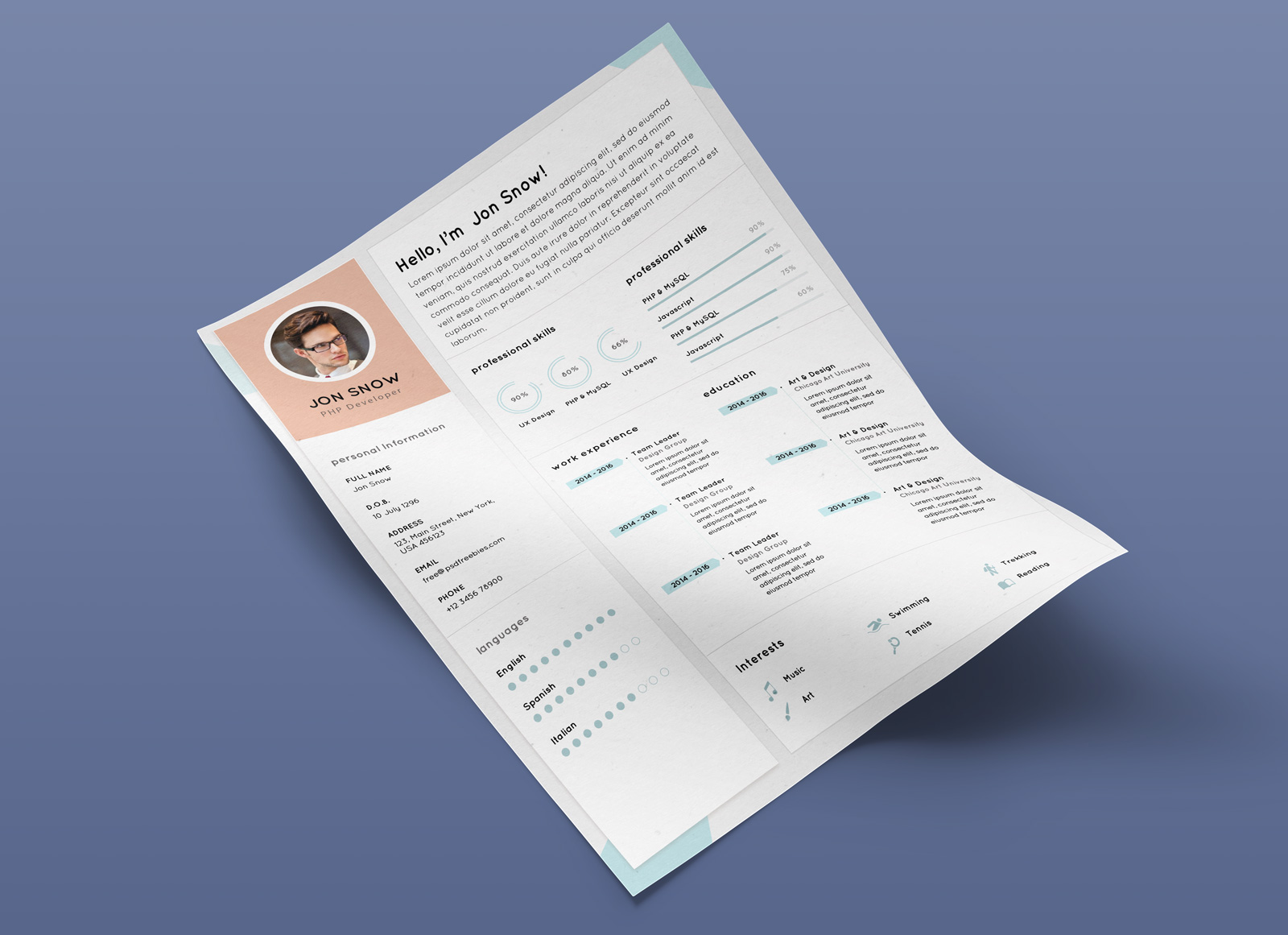 Free-Clean-Resume-CV-Template-PSD-for-PHP-Developer-2