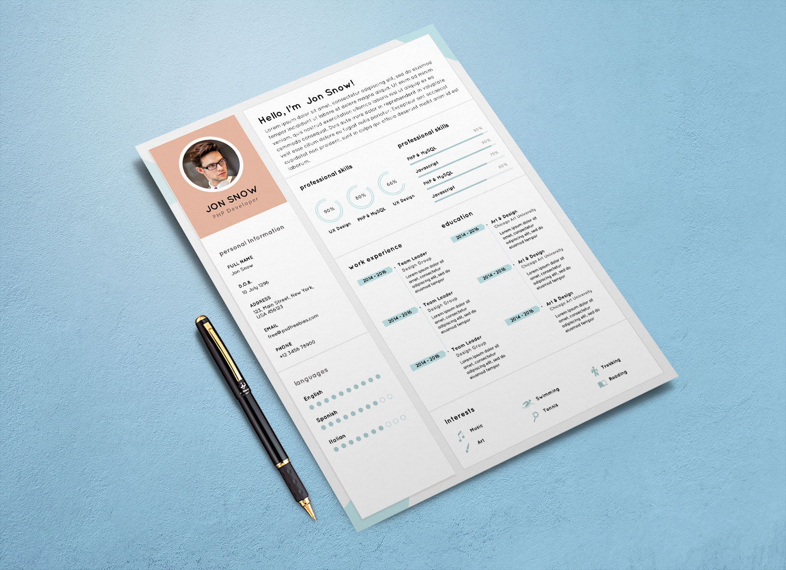 Free Clean Resume CV Template PSD For PHP Developer