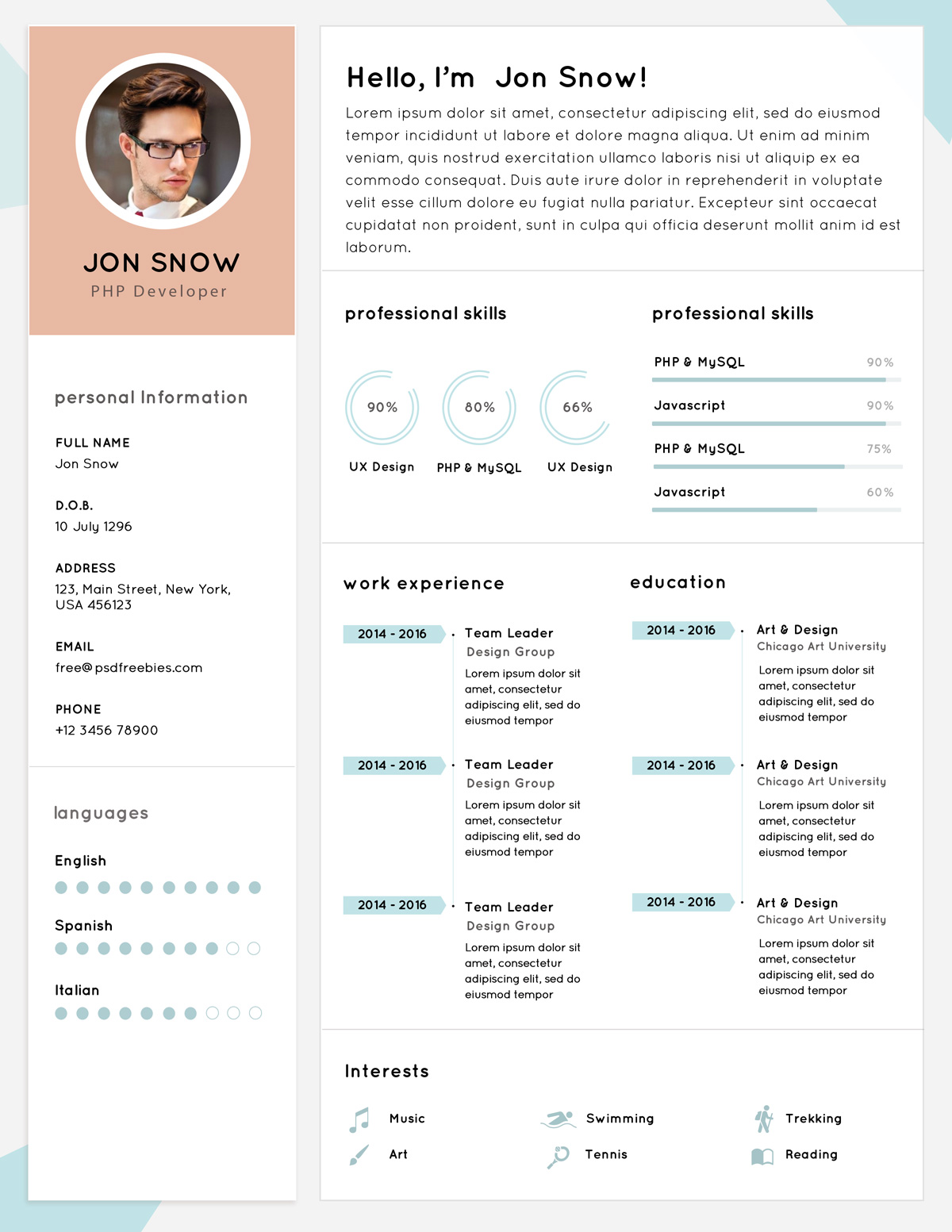Free-Clean-Resume-CV-Template-PSD-for-PHP-Developer