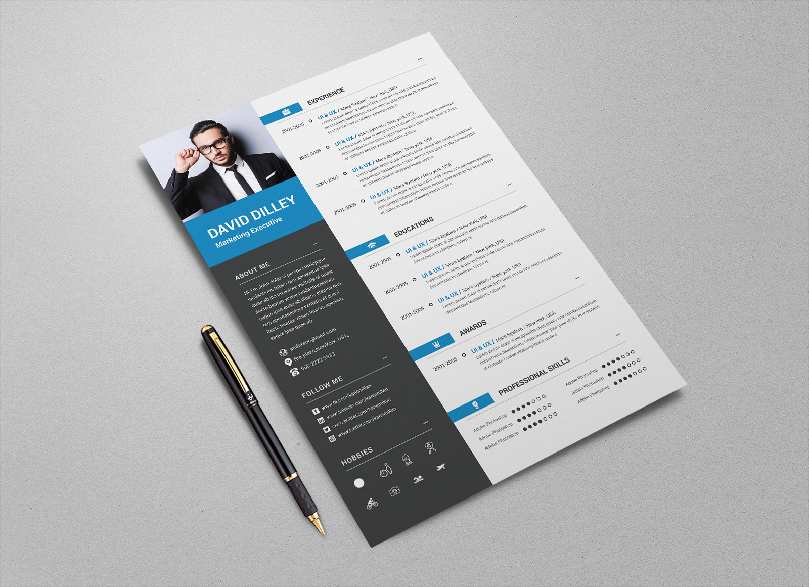Free-Professional-CV-Template-&-Cover-Letter-for-Marketing-Executive-(3)