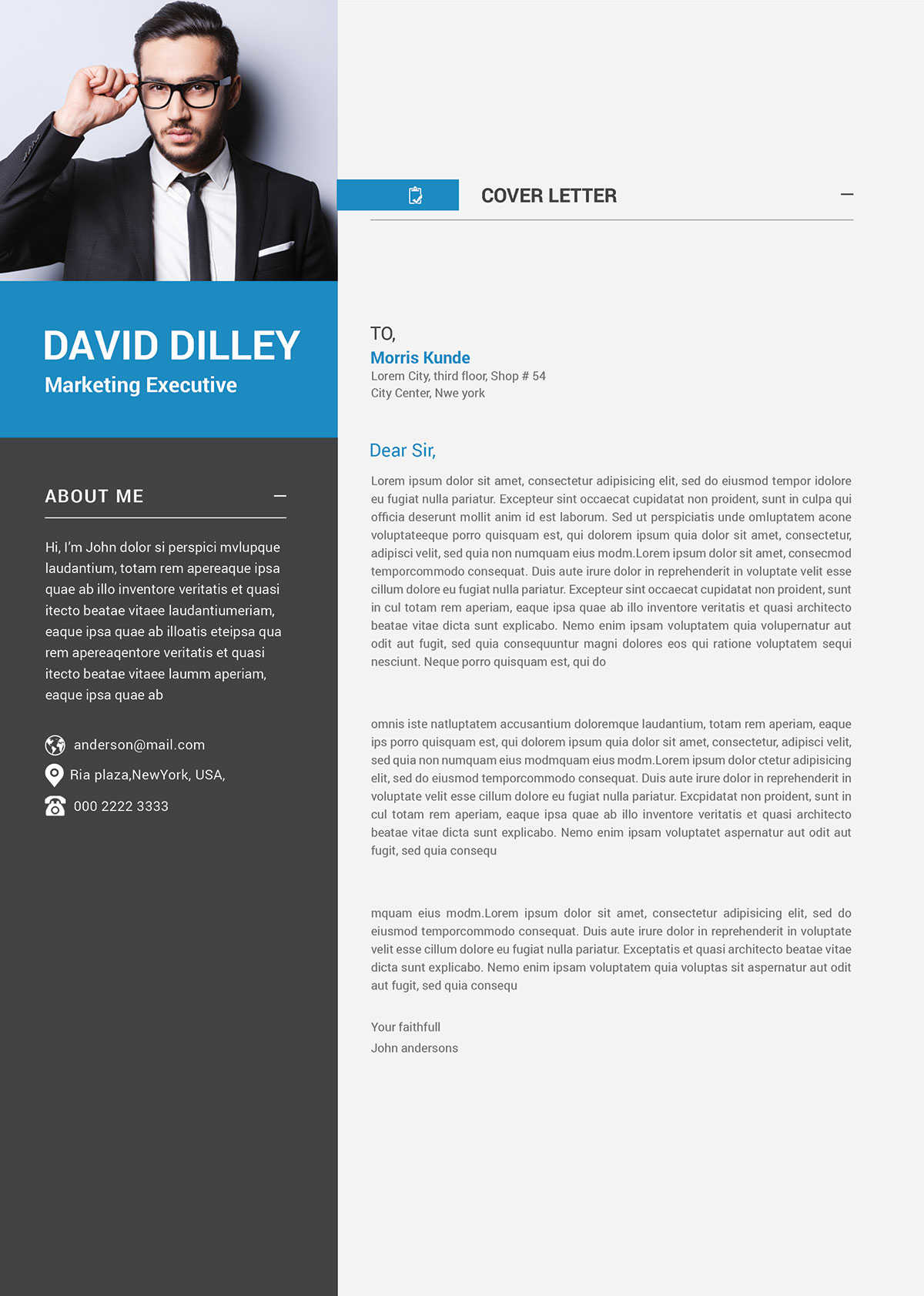 Free-Professional-CV-Template-& Cover-Letter-for-Marketing-Executive (6)