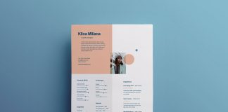 Free-Unique-Style-Resume-Template-&-Cover-Letter-in-Ai-Format