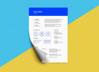 Free_Modern_CV_Template_in_PSD_For_Web-Designer-3