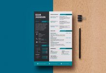 Free-Professional-PSD-Resume-Template-For-Game-Designer-&-Programmer-3