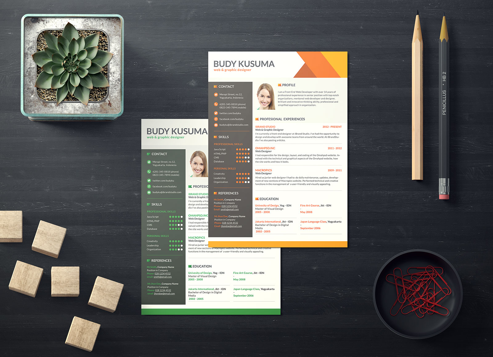 free professional resume template for job in photoshop psd