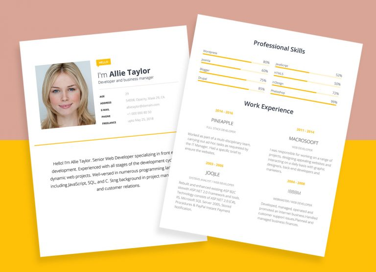 Free Word Resume Template For Software Developers